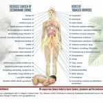 Graphic, SDG-Factsheet Tobacco | Decent Work, secondhand smoke