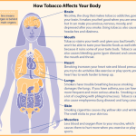 tobacco health effects SDG 3