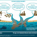 SDG-Factsheet, Wie Tabak die Gewässer verschmutzt, Nikotin, Pestizide, Chemikalien